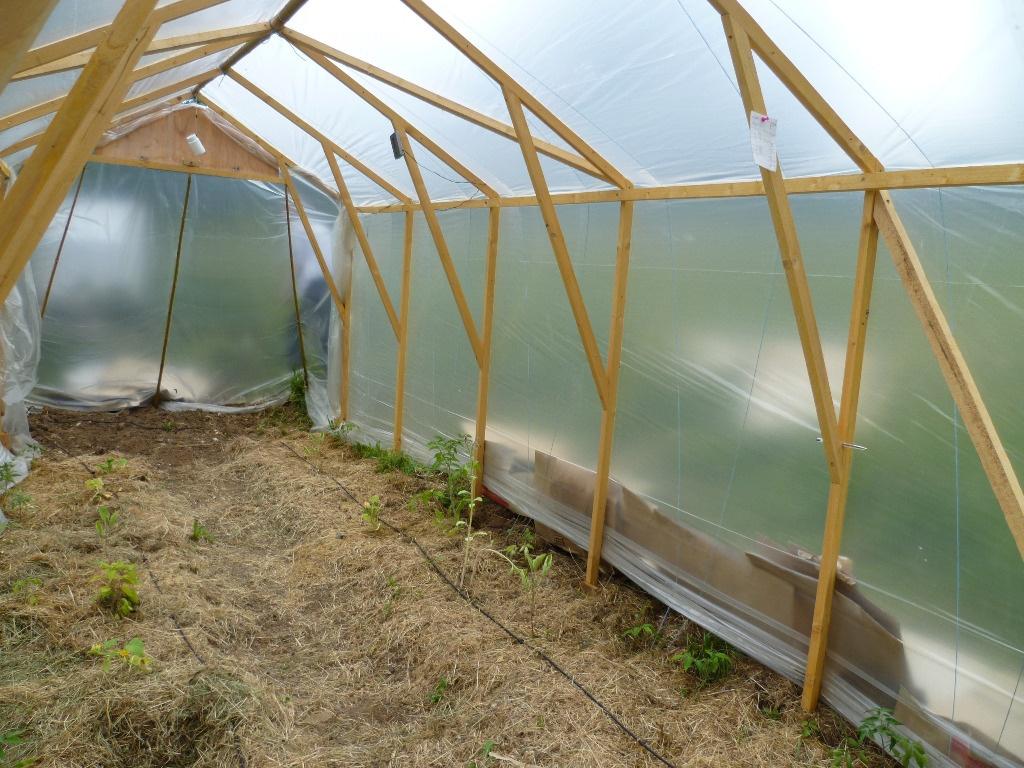 serre tomates 2mx5m par dam sur l 39 air du bois. Black Bedroom Furniture Sets. Home Design Ideas