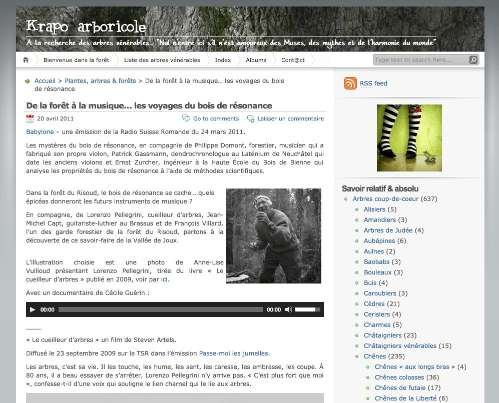 Comment Faire Un Bucher En Bois https://www.lairdubois.fr/trouvailles/1-copain-des-copeaux