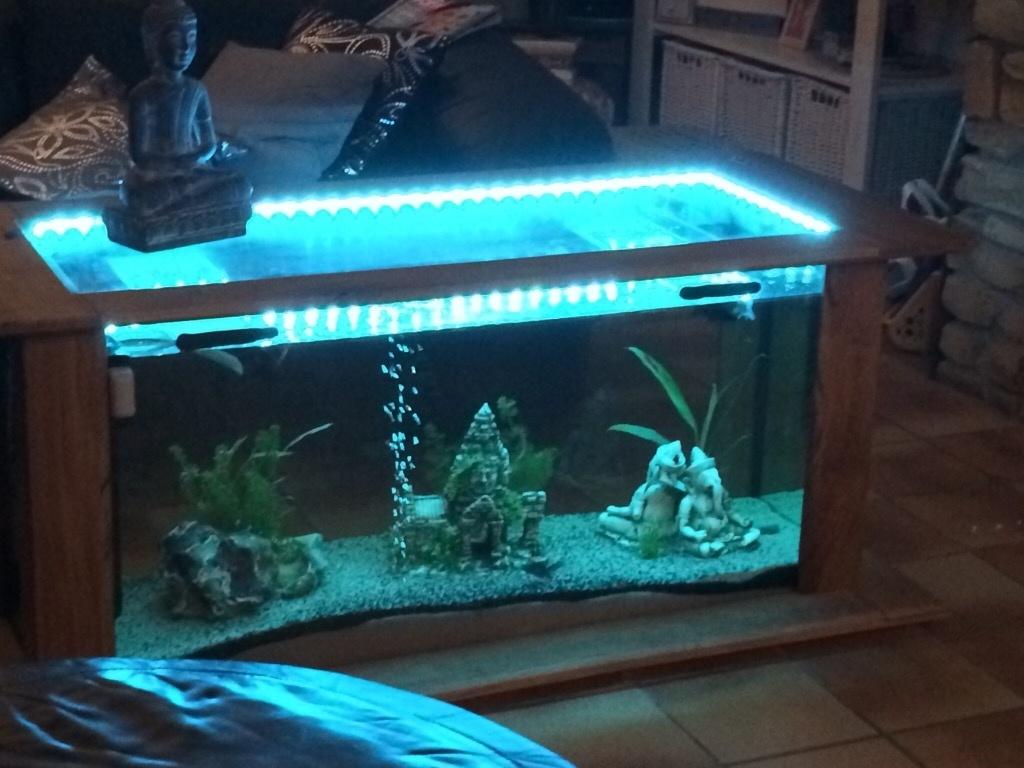 table basse aquarium par thiego sur l 39 air du bois. Black Bedroom Furniture Sets. Home Design Ideas