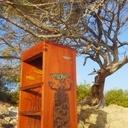 Tabouret  Baobab