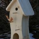 Maison pour les oiseaux
