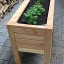 Bac à plantes - légumes