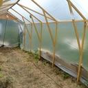 Serre à tomates 2mx5m