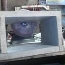 Lapidaire prototype