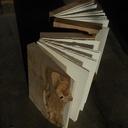 Livres en bois