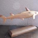 Requin en pin