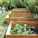 Bacs de jardin