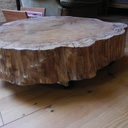 Table basse tronc