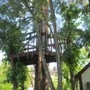Petit projet d'été: une cabane dans les arbres