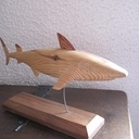 Requin en pin