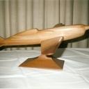 maquette bois avion