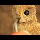 Andy Burgess un professionnel Sculpteur sur bois à la tronçonneuse