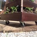 Fontaine de fraisiers
