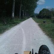 Dans l'Yonne