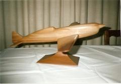 Maquette     avion Caudron