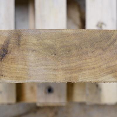C'est le bois, pas la palette qu'il faut regarder